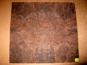 Custom Walnut Veneer Skin