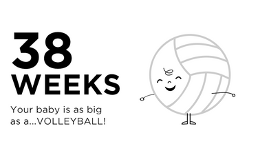 38-weeks-pregnant-your-baby-is-as-big-as-a-volleyball