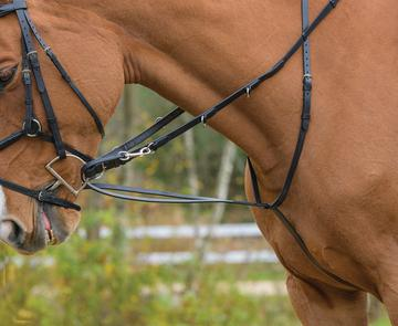 Blenheim German Martingale