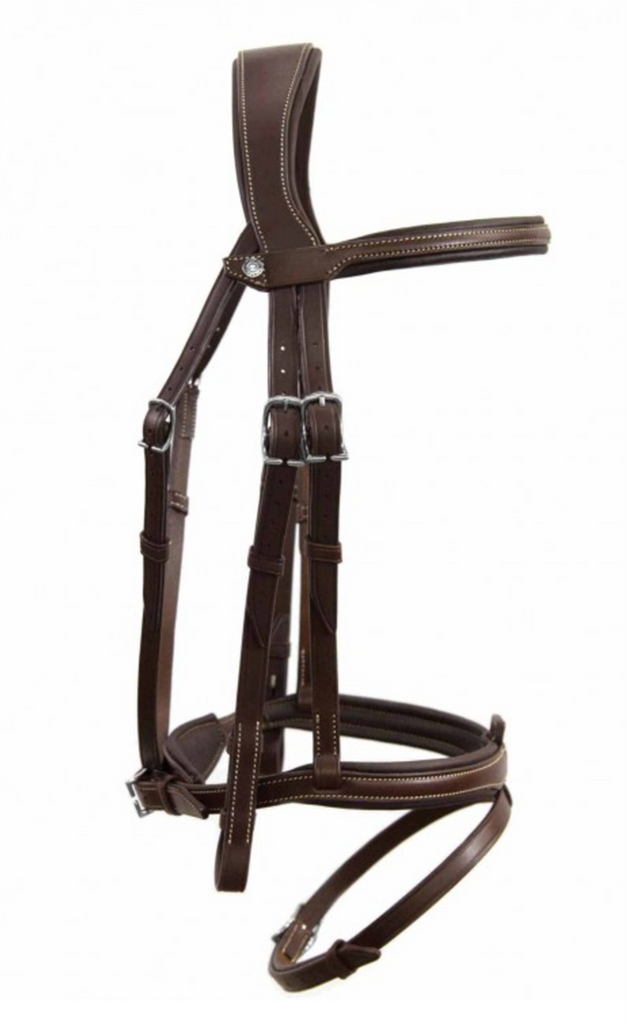 Antares Flash Origin Bridle