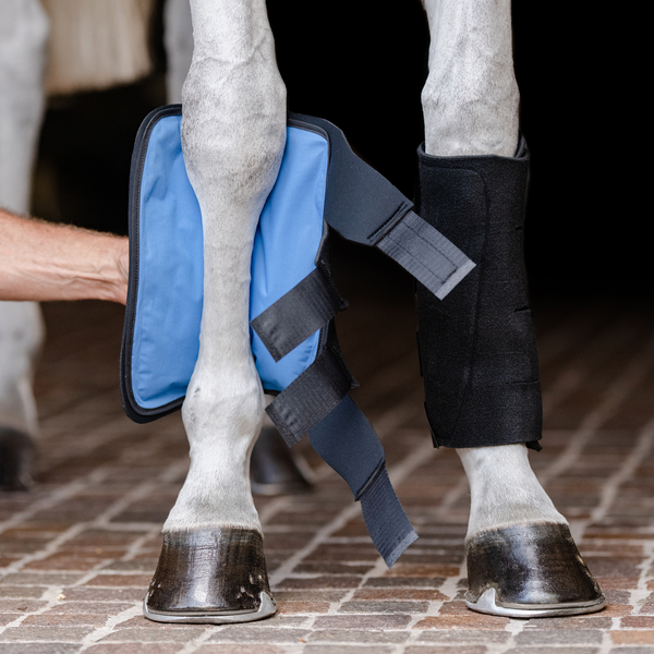 Equifit Essential Cold Therapy Tendon Boots