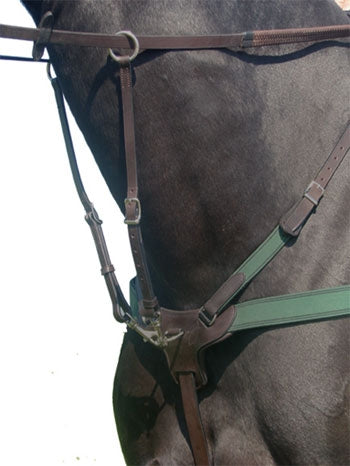 Amerigo 5-Point Breastplate