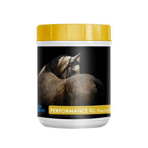 Mad Barn Performance XL Electrolytes