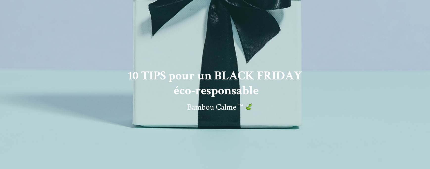 10 TIPS pour un BLACK FRIDAY éco-responsable