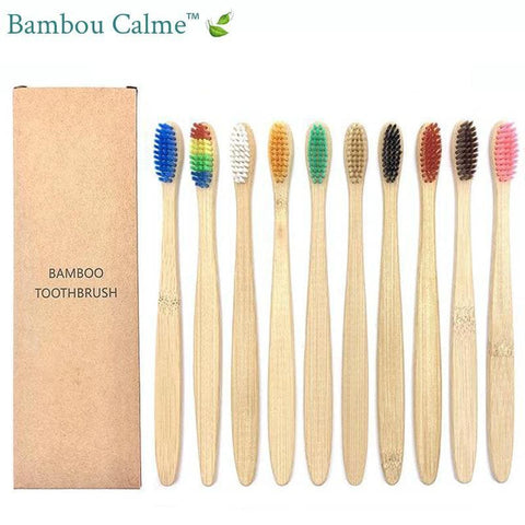 Brosses à Dents Bambou Multicolores | Bambou Calme