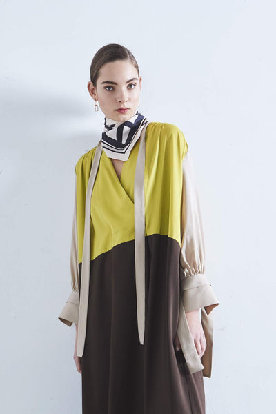 Psophia color block silk dress