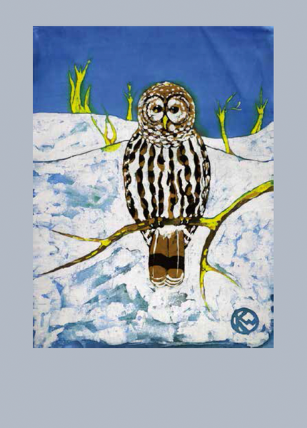 Barred Owl :: Note Card