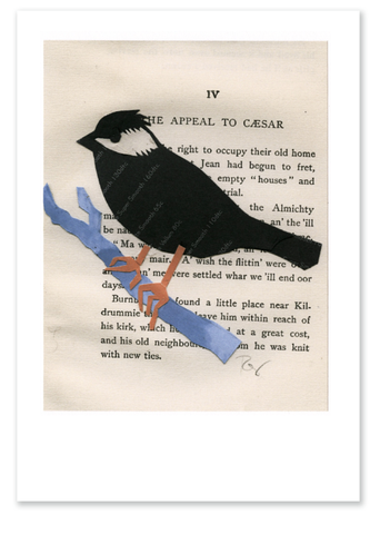 Chickadee :: Note Card