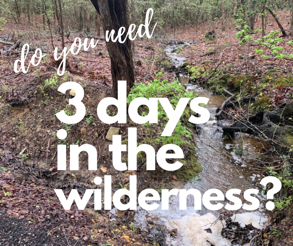 Three days in the wilderness