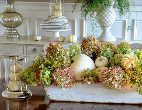 Pumpkins and hydrangea