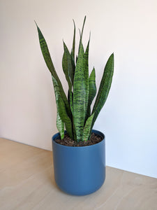Lisbon Plain Planter (Blue)