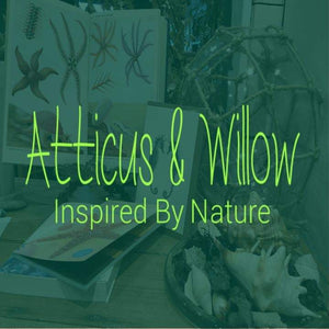 Atticus & Willow