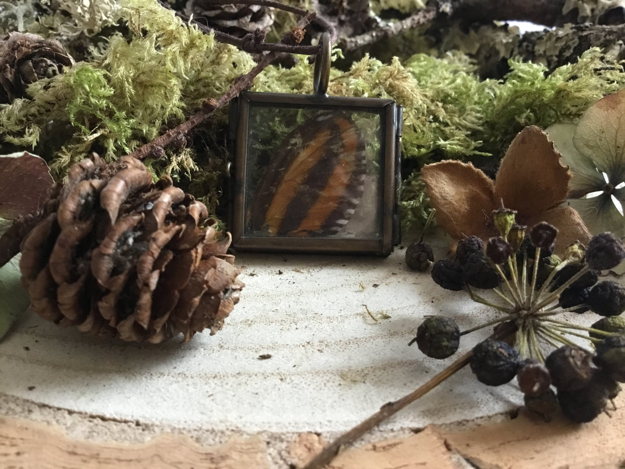 Natural Ephemera Pendant