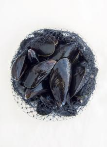 Fresh Cleaned Mussels 2kg - CPT ONLY