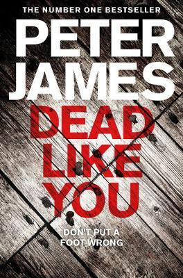 Roy Grace Book 6: Dead Like You by Peter James