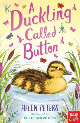 A Duckling Called Button by Helen Peters