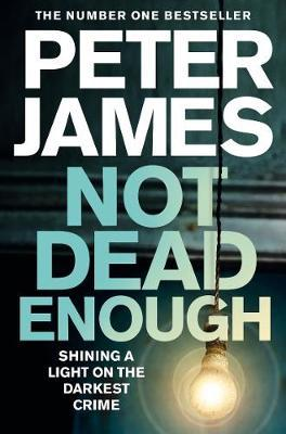 Roy Grace Book 3: Not Dead Enough by Peter James