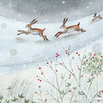 Hares Christmas Card Pack