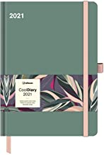 2021 Sage Green Large Cool Diary