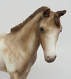 SKETCHER'S-OOAK CHESTNUT APPALOOSA WEANLING BY SHERYL LEISURE 4/3