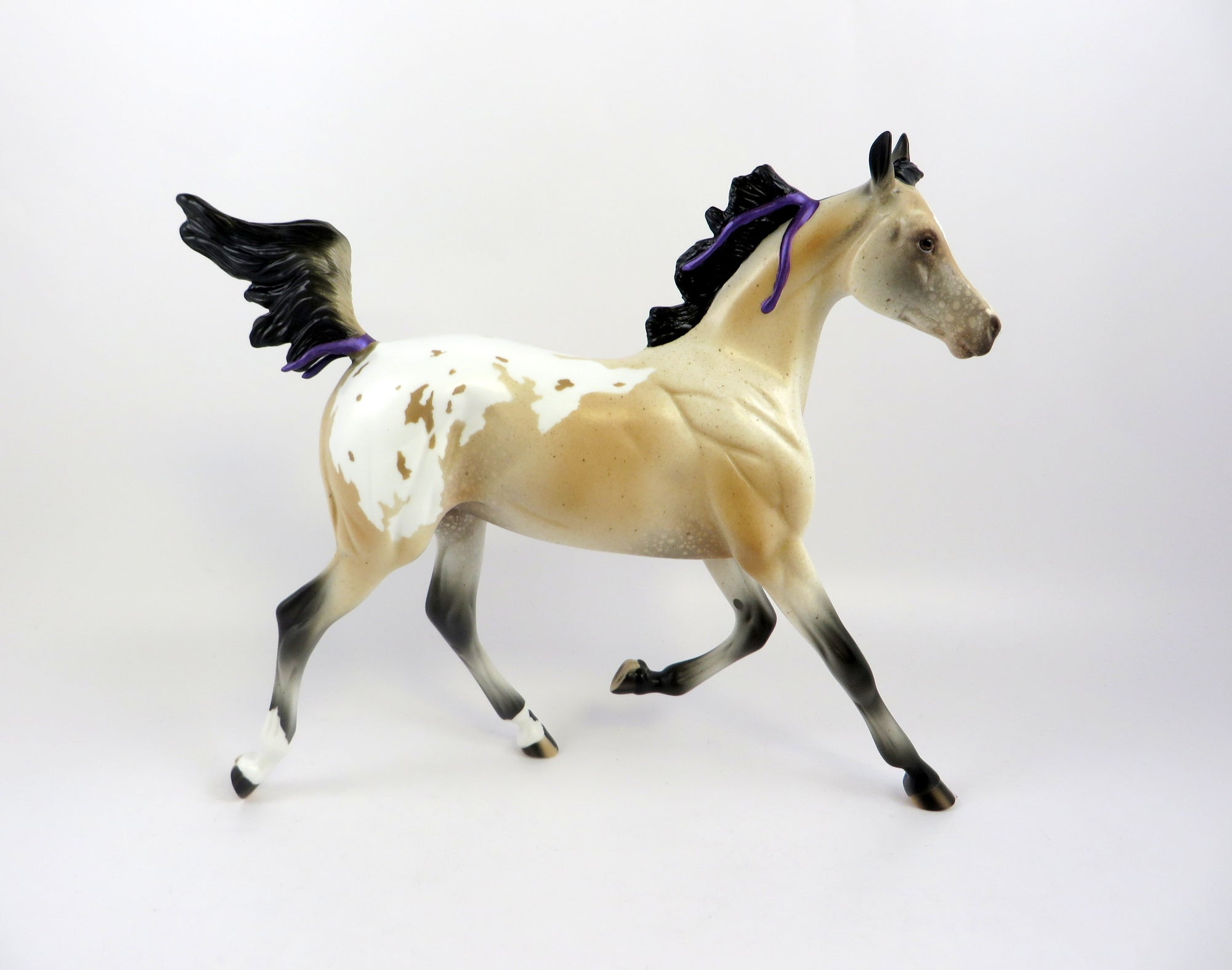 PRINCESS CHARLOTTE-LE-10 BUCKSKIN APPALOOSA YEARLING WITH PURPLE RIBBON EQ 19