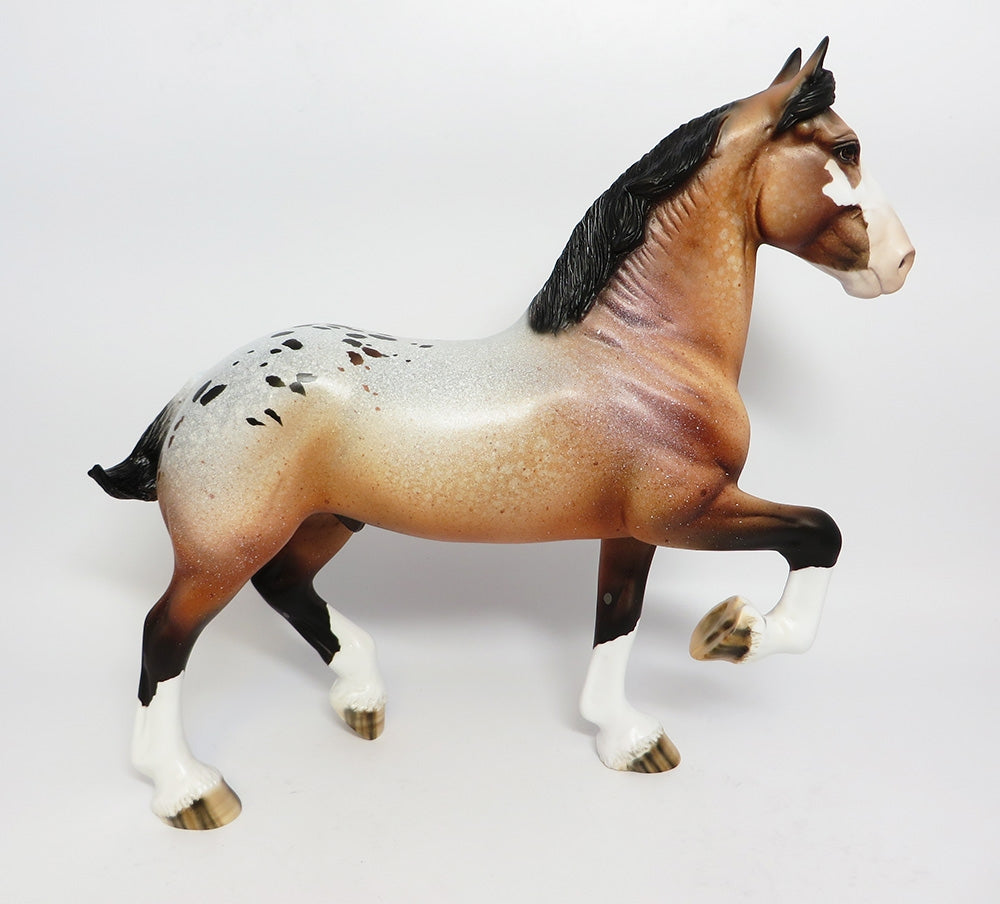 FESTIVE-LE-5 BAY APPALOOSA TROTTING DRAFTER WITH CM TAIL AND CM FEATHERS WHS 17