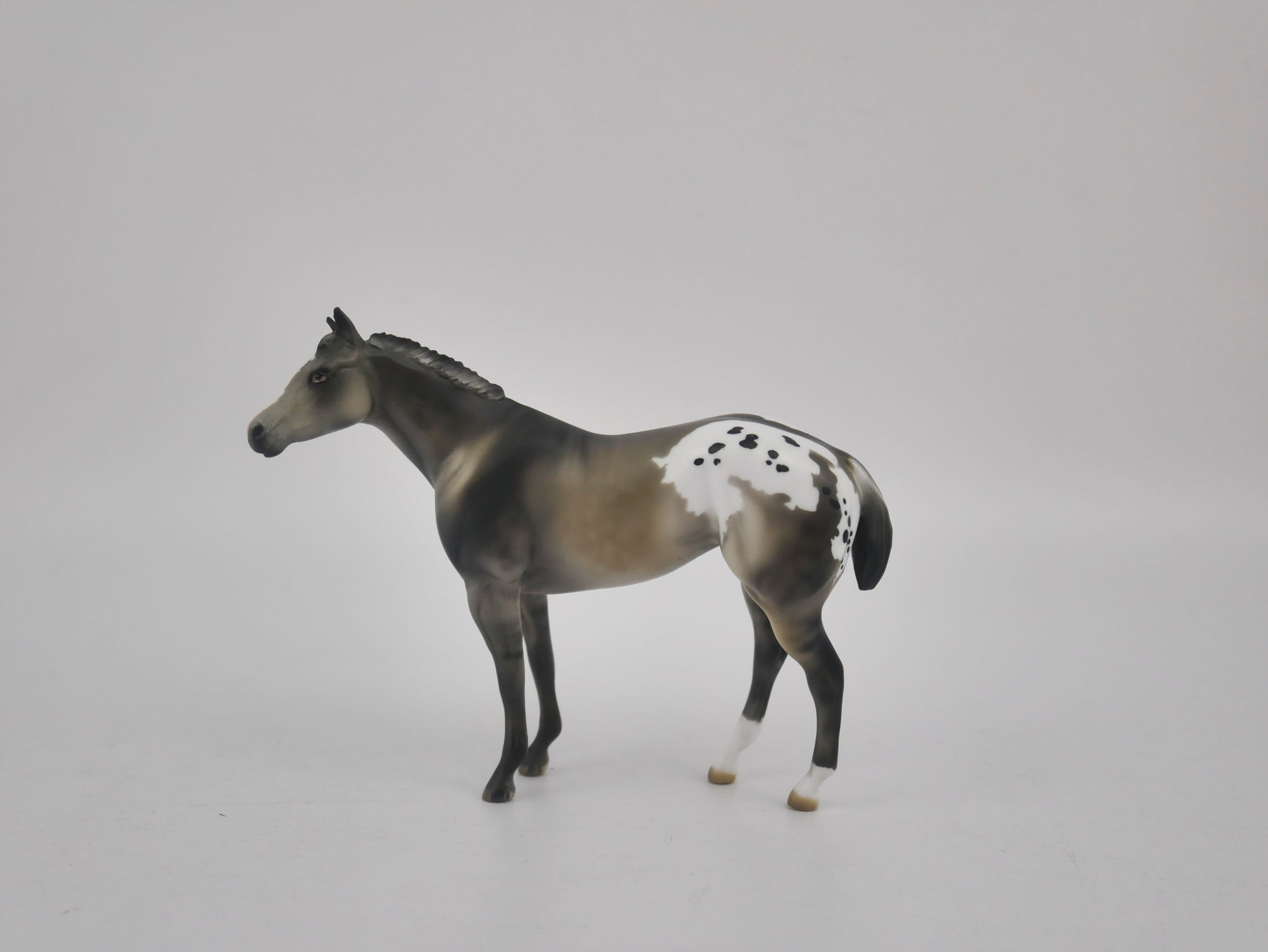 MINI ME FRIDA - LE-20 SILVER GRULLA APPALOOSA FRIDAY RELEASE BY  JULIE KEIM EQ 2020