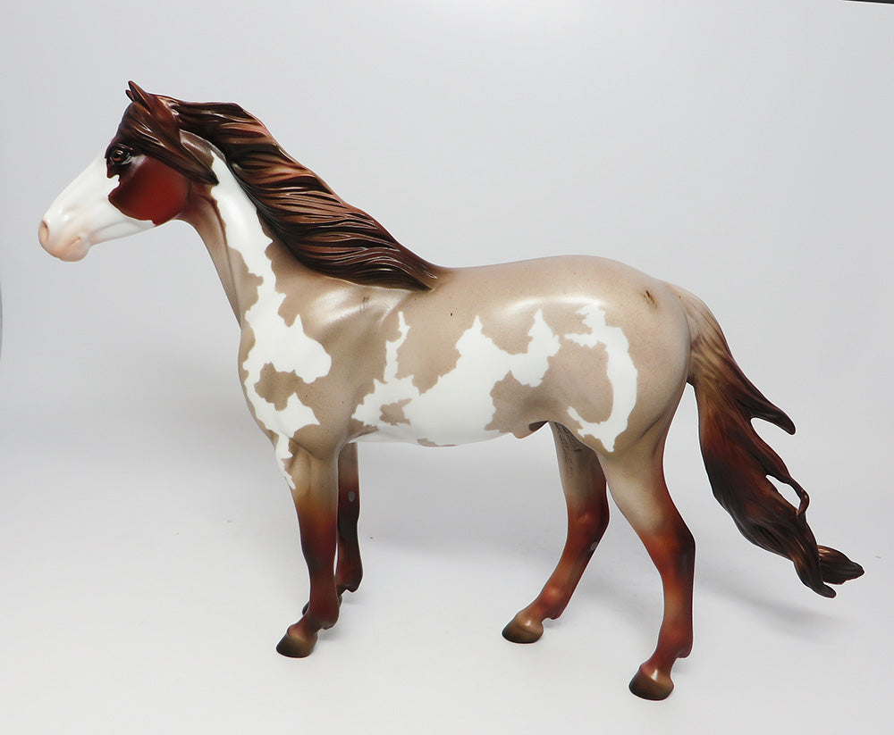GRAND CANYON- LE-15 CHESNUT ROAN PINTO SPANISH MUSTANG BY JULIE KEIM EQ 2017