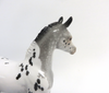 PUPPY TOOTH-LE-30 APPALOOSA CM FOAL WITH FLIPPED TAIL MODEL HORSE SHCF 2019