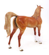 NINA- LIGHT CHESTNUT-ARABIAN-OOAK 9/30
