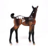 TICKLE ME PICKLES-BAY APPALOOSA-FOAL-CHIPS- LE-5 10/7