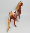 ECTOR-OOAK RED APPALOOSA SPANISH MUSTANG MODEL HORSE 06/01/17
