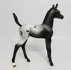 TWILIGHT-OOAK BLACK APPALOOSA ARABIAN FOAL MODEL HORSE 06/02/17