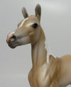 JACONITA-OOAK PALOMINO PINTO ARABIAN FOAL MODEL HORSE BY DAWN QUICK 06/21/17