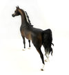 THE CHOCOLATIER-OOAK DAPPLE CHOCOLATE BAY GOING GREY ARABIAN MODEL HORSE BY SHERYL LEISURE 3/3