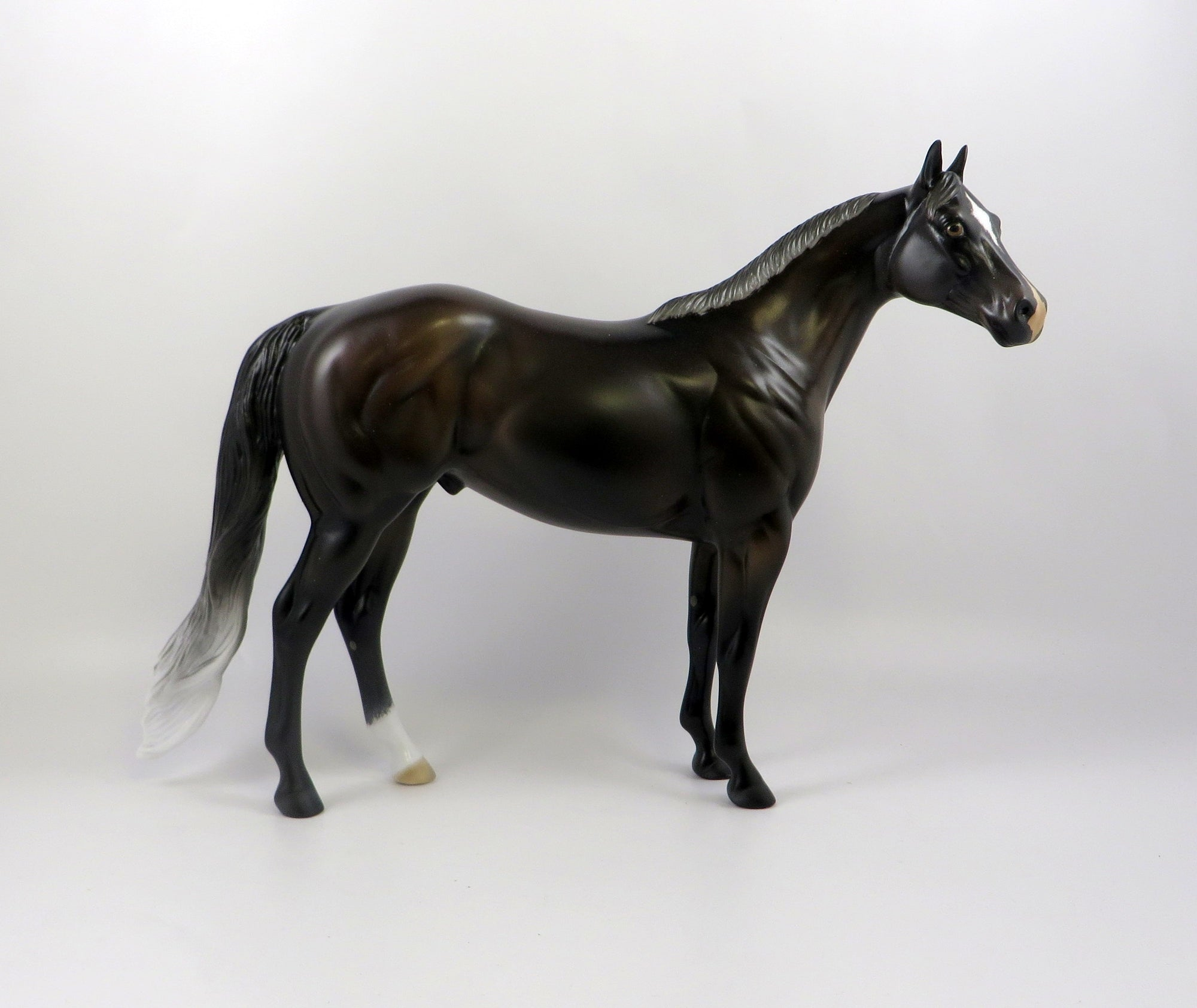 NEVADA SKY-OOAK BAY GOING GREY ISH MODEL HORSE 7/22/19