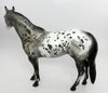 RASPUTIN-OOAK APPALOOSA ISH MODEL HORSE BY DAWN QUICK 03/02/17