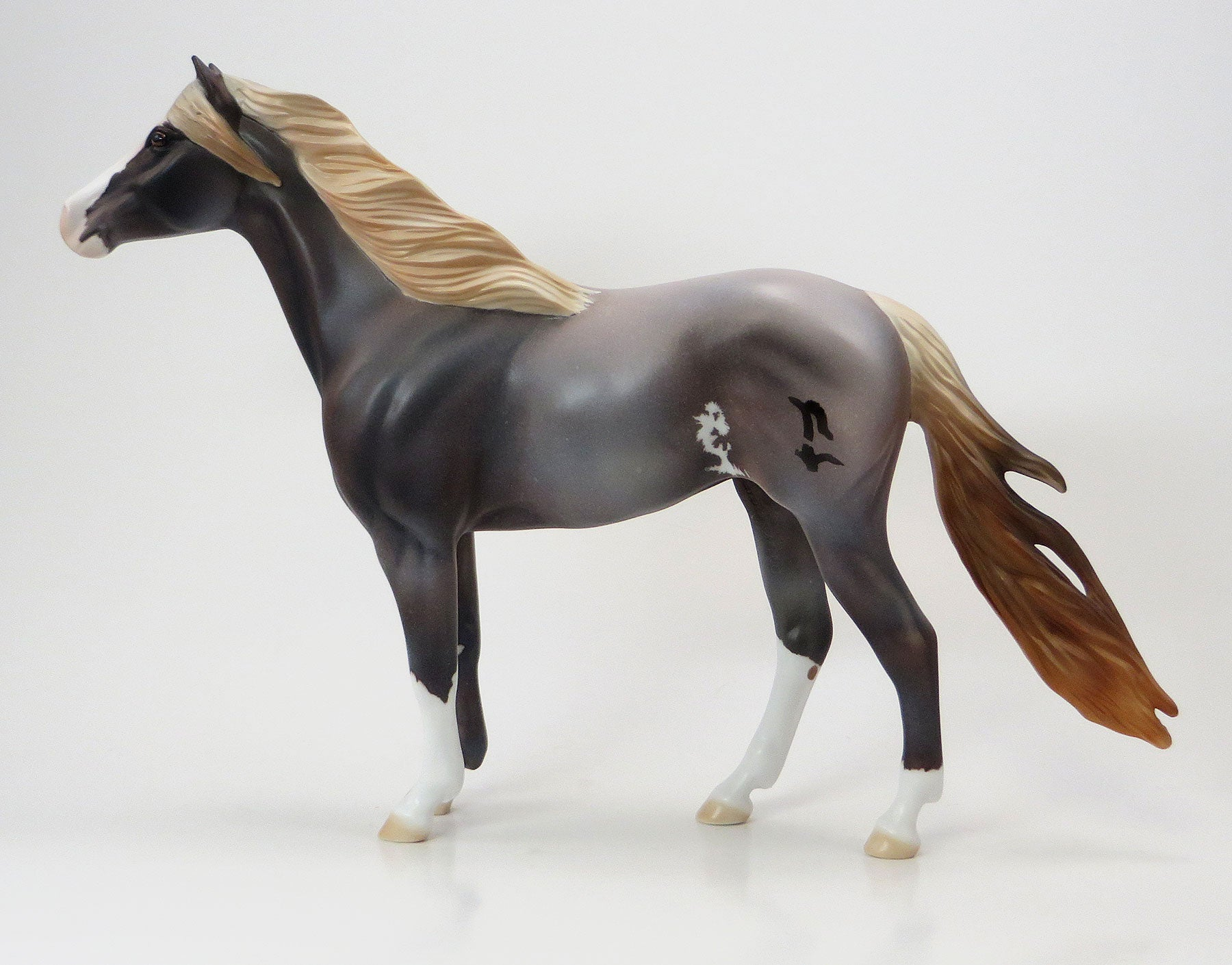 SPRING WILLOW - EQ 2015 LE15 Grulla Roan Sabino Mustang 7/23