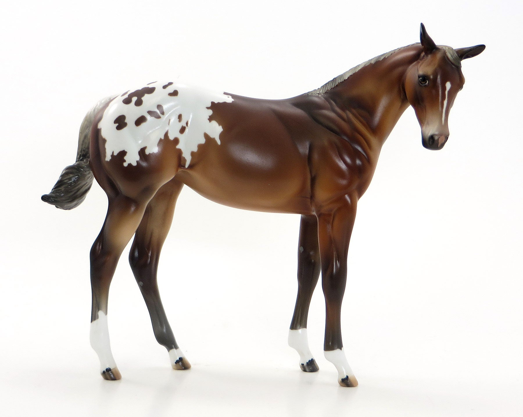 MISS TIGER TINK AKA TINKY - Chestnut Appaloosa Weanling Model Horse - EQ 2015 - LE 12 - 7/23