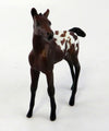 SPOTTED CHOCOLATE- BAY APPALOOSA  FOAL CHIP MODEL HORSE 10/12/16