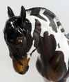 SHOW ME WITH HIGH SHEEN-OOAK GLOSSY BAY PINTO ANDALUSIAN MARE MODEL HORSE BY DAWN QUICK 03/24/17