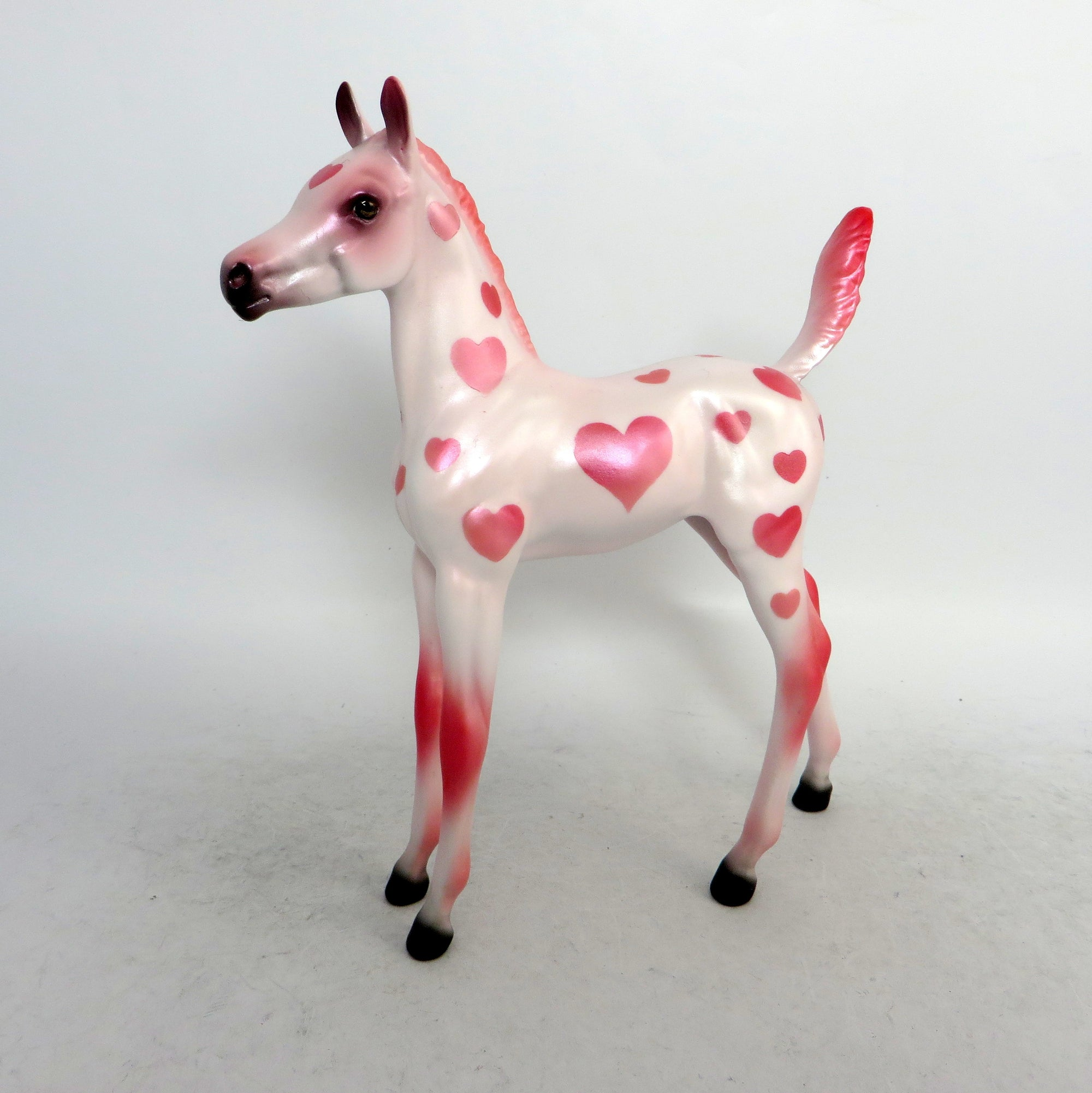 valentine foal