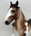 BIG BOY-OOAK STAR DAPPLED BAY GOING GREY TROTTING DRAFTER BY SHERYL LEISURE 03/29/17