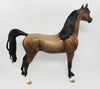 IOWA-OOAK BAY ROAN ARABIAN MODEL HORSE 03/31/17