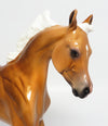 ZIVA-OOAK GOLDEN PALOMINO YEARLING MODEL HORSE W/ GLOSSY FINISH BY JULIE KEIM 04/05/17