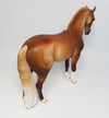 GOLDIE~OOAK DAPPLE CHESTNUT ANDALUSIAN BY DAWN QUICK 3/15