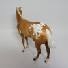 ROLD GOLD~OOAK GOLDEN PALOMINO APPALOOSA WEANLING BY JULIE KEIM 4/13