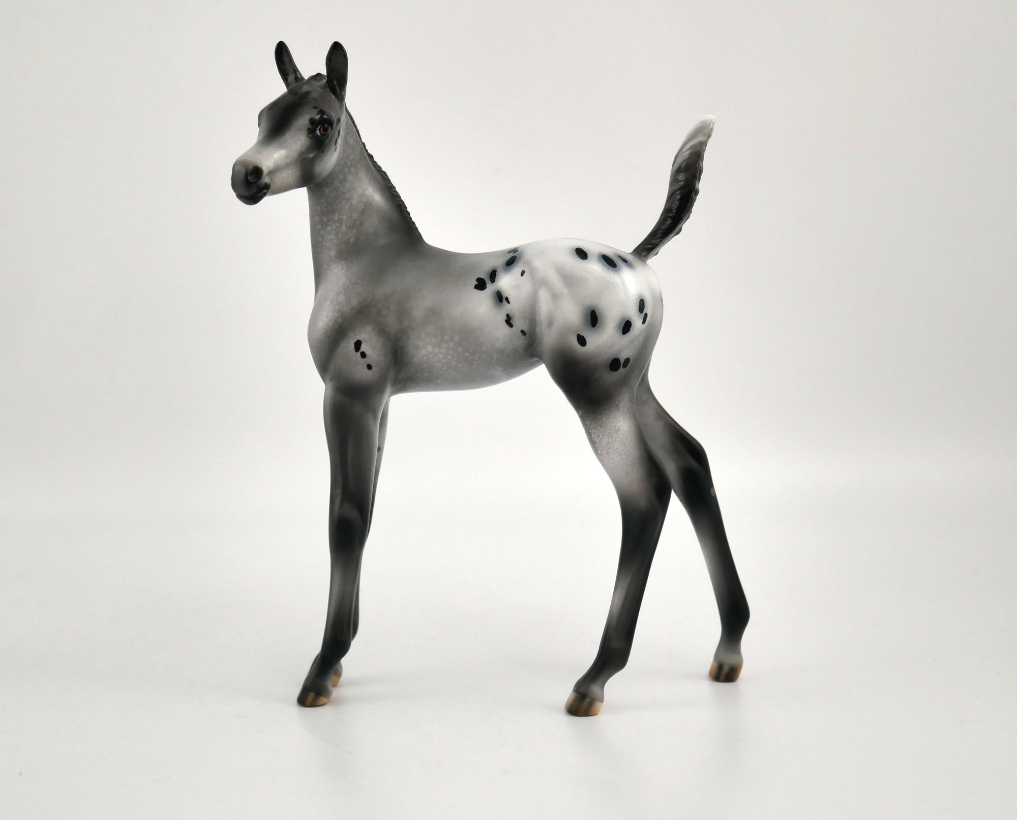 Luna Appaloosa Foal By Julie Keim MM 2020