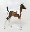 BELLEZA-LIMITED EDITION BAY TOBIANO FOAL MODEL HORSE BY SHERYL LEISURE 7/20 *PRE-ORDER