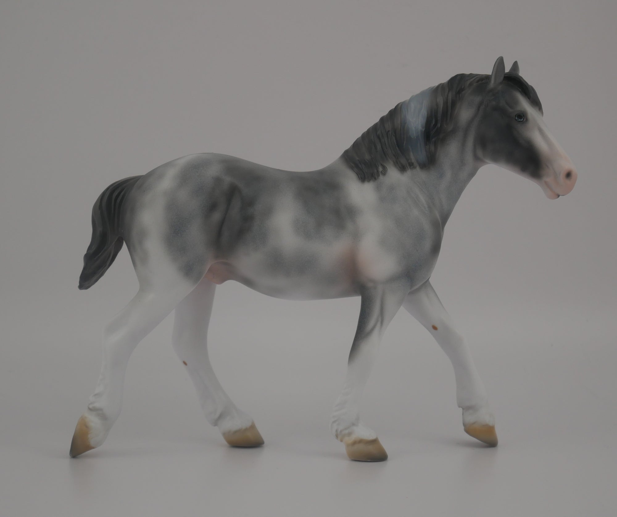 MINI PICASSO PEBBLE-LE-20-BLUE ROAN SABINO DRAFT PEBBLES EQ 2020